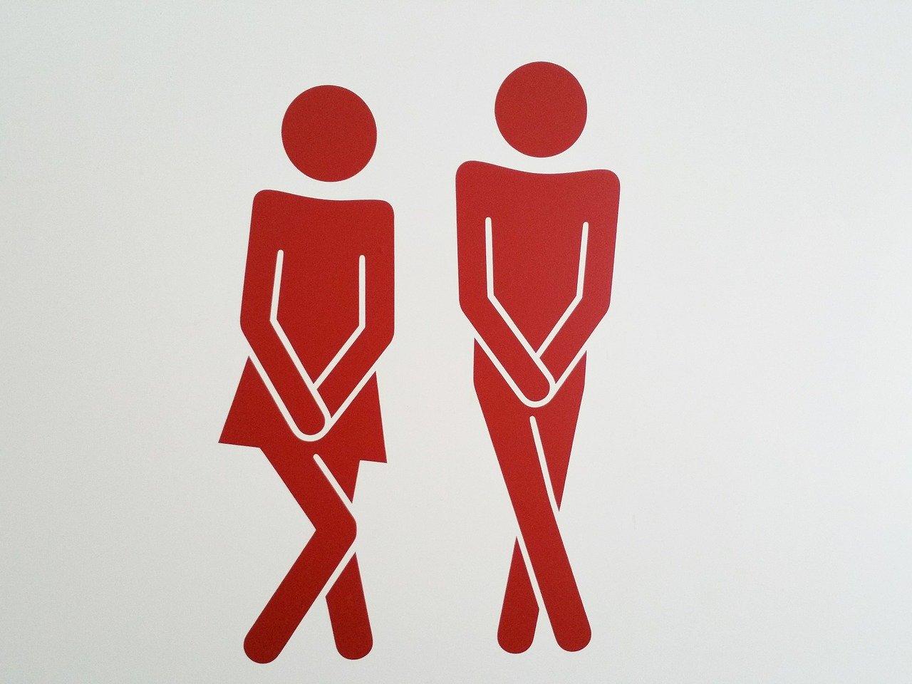 WC ou Sanibroyeur